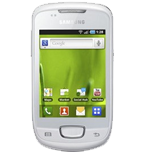 Samsung Galaxy mini plus 4G (GT-S5570)