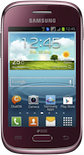 Samsung Galaxy Young Plus (gt-s6293t)